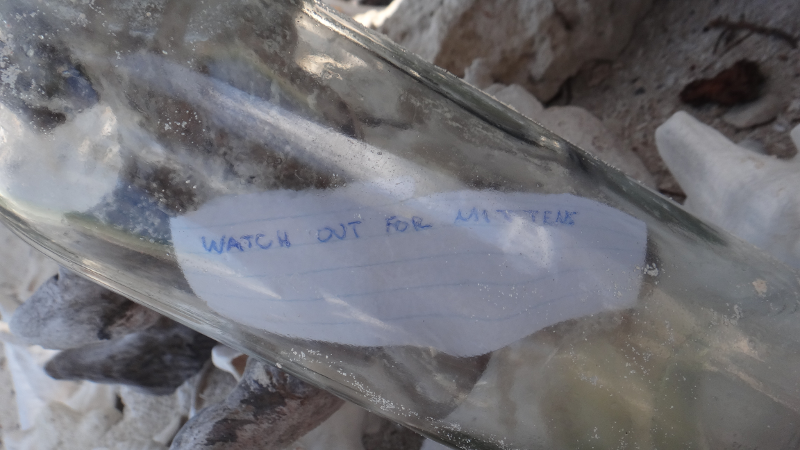 A message adrift in the Costa Maya