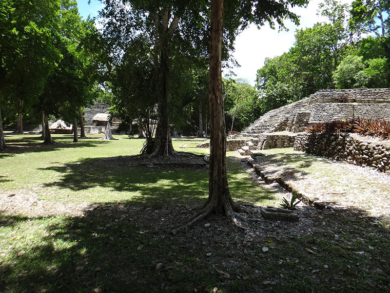 Temple of the toucans