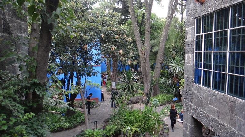 The Garden at the Frida Kahlo Museum